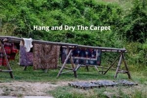 Hang and Dry The Carpet