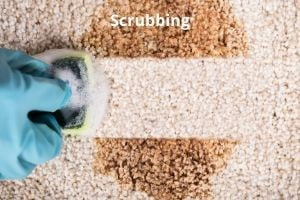 How to clean carpets with Vinegar